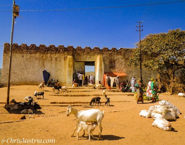 Harar_Ethiopia_Fiyel_Gate