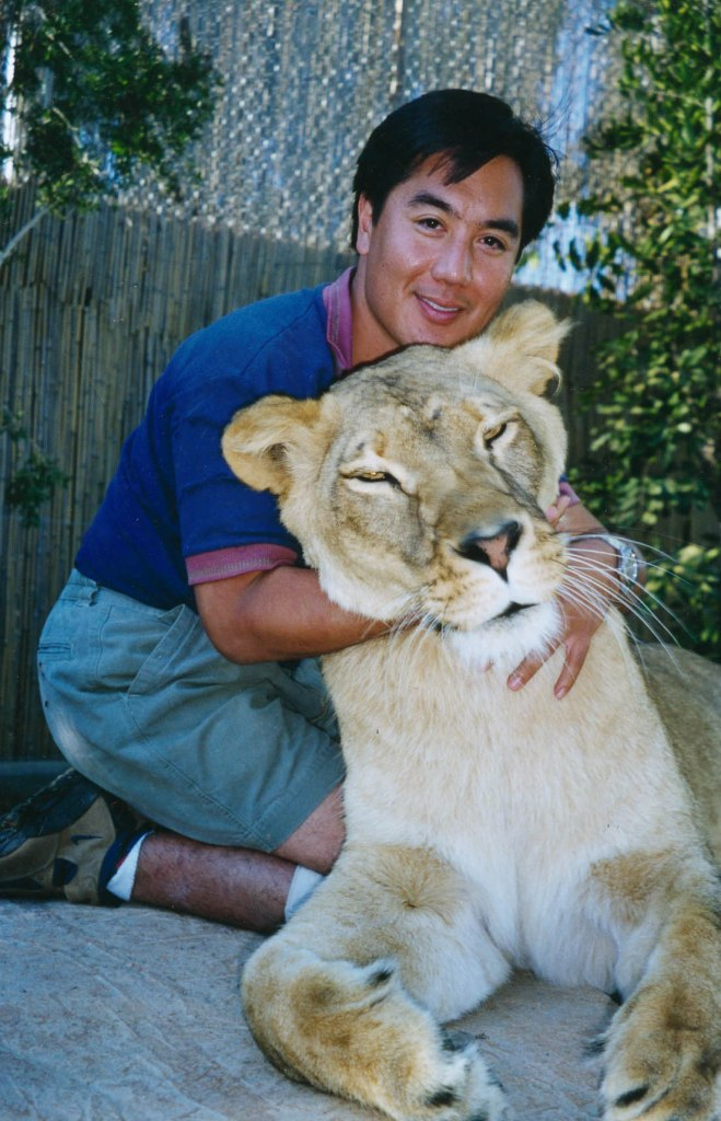 With Nikka, the first lion that I raised as a cub.