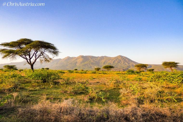 MtFentale_Ethiopia_Landscape