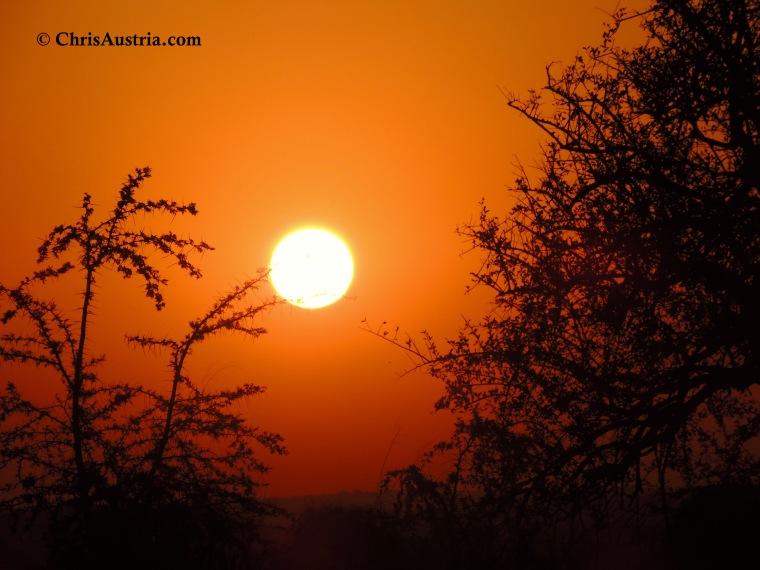 Kidepo_Sun.jpg