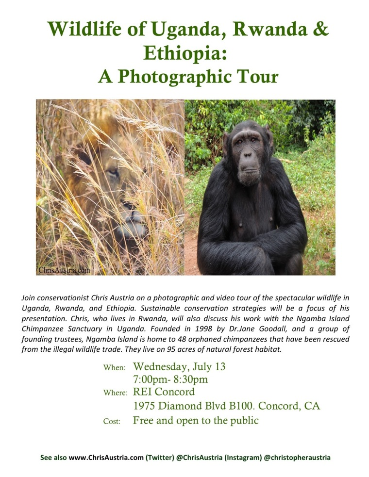 ChrisAustria_Wildlife_Flyer_REI_Concord 2